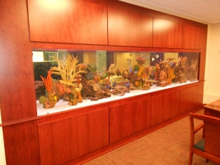 Cabinets Twin Cities for fishbowl